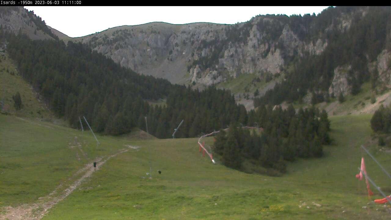 Webcam de Isards